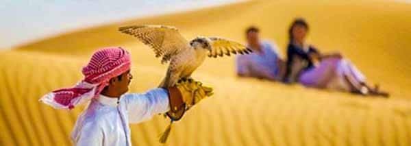 Falcon Dubai Desert Safari - Luxuria Tours & Events
